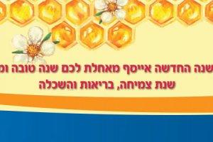 Banner2018Roshhashana1 ניוזלטר אייסף - ספטמבר 2013